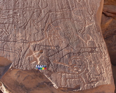 An AlUla rock art panel shows two dogs hunting an ibex, surrounded by cattle. The weathering patterns and superimpositions visible on this panel indicate a late Neolithic age for the engravings, within the date range of the burials at the recently excavated burial sites.